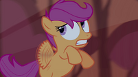 Scootaloo looks at something S3E06