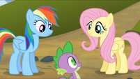 Rainbow Dash and Fluttershy look at Spike S3E9