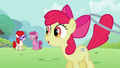 Apple Bloom &quot;Great job, girls!&quot; S2E6.png