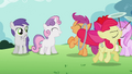 Apple Bloom is the most special pony ever S02E06.png