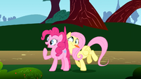 Fluttershy crashes against Pinkie S1E7