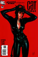 Catwoman Vol 3 70