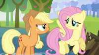 Applejack and Fluttershy &quot;what&#39;s he going on about now?&quot; S03E10