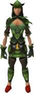 Green d'hide blessed set equipped (female)