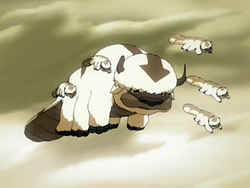 Appa&#39;s mother