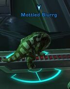 Mottled Blurrg
