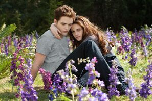 Edward y bella 6