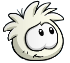 White Puffle Happy NICE