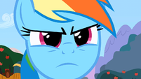 Rainbow Dash serious S2E15