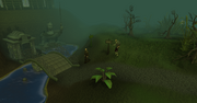 Morytania entrance
