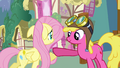 Fluttershy rents hot air balloon S03E13.png
