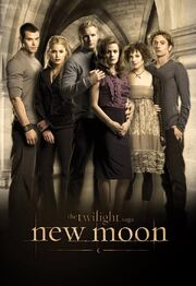 New-moon-twilight-series-5141864-600-873