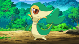 EP728 Snivy de Ash