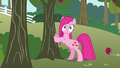 Pinkie Pie cute reaction S3E13.png
