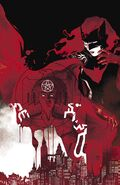 Batwoman Vol 1-20 Cover-1 Teaser