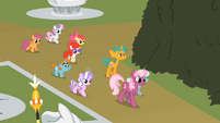 Twist Cutie Mark Crusaders Cheerilee&#39;s Class S2E1