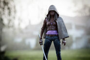 Series 3 Action Figures Michonne