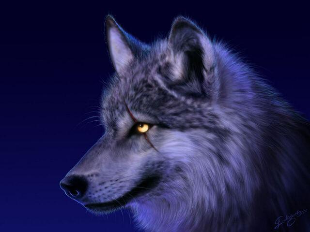 [13. boss] 640px-Wolf