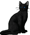 Crowfeather.warrior