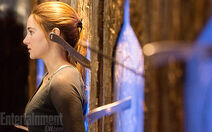 DIVERGENTfirst look