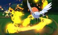 Fletchling vs Helioptile segundo movimiento