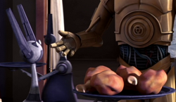 Unidentified LEP servant droid 3 (Amidala)