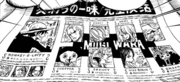 Timeskip Straw Hat News