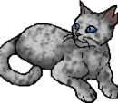 Ashfur (TC)