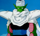 Piccolo