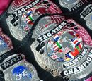 ARW World Tag Team Championship