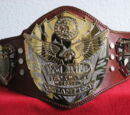 ACW Excel Championship