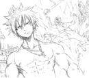 Gray Fullbuster/Image Gallery