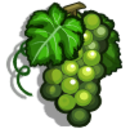 Sauvignon Blanc-icon.png