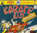 Karate Kid Vol 1 4