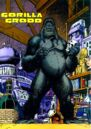 Gorilla Grodd 0001.jpg