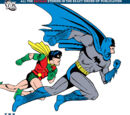 Batman Chronicles Vol 2 9