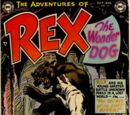 Adventures of Rex the Wonder Dog Vol 1 10
