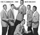 1950s music groups