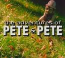 The Adventures of Pete &amp; Pete