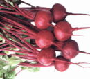 Beet Salad II