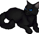 Cinderpelt