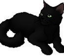 Hollyleaf