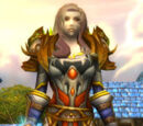 Tabard of the Achiever