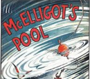 McElligot's Pool