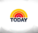 The Today Show (29 December 2010)