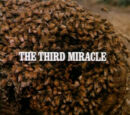 Episode 604: The Third Miracle