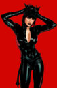 Catwoman 0010.jpg