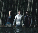 Mhadick/Teen Wolf Season 2 DVD Giveaway