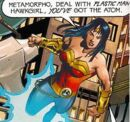 Wonder Woman Secret Society of Super-Heroes.jpg