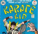 Karate Kid Vol 1 6